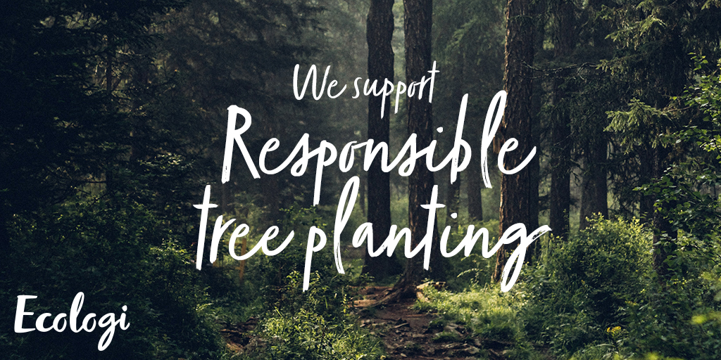 Image of woodland showing statement - we support responsible tree planting